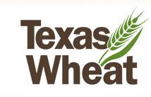 Texas Wheat